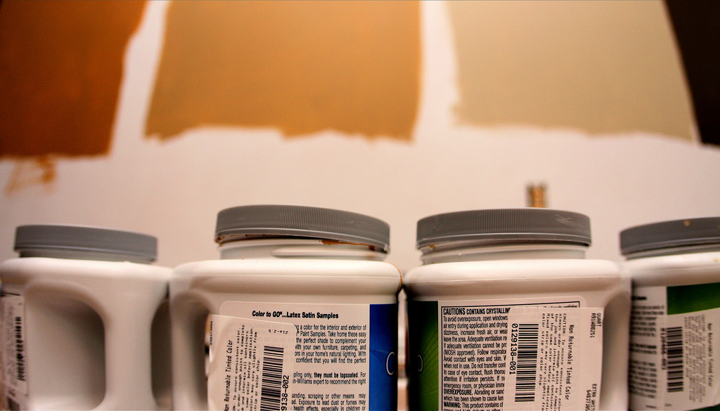 Painting Pro's Trade Secrets
